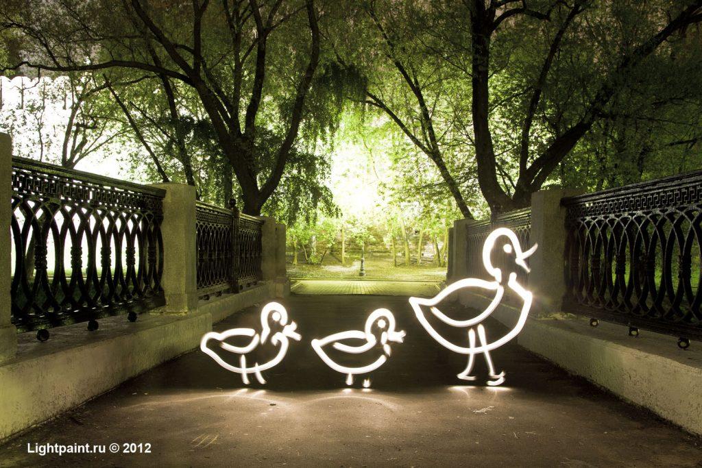 Lightpaint (фризлайт) - a family of ducks
